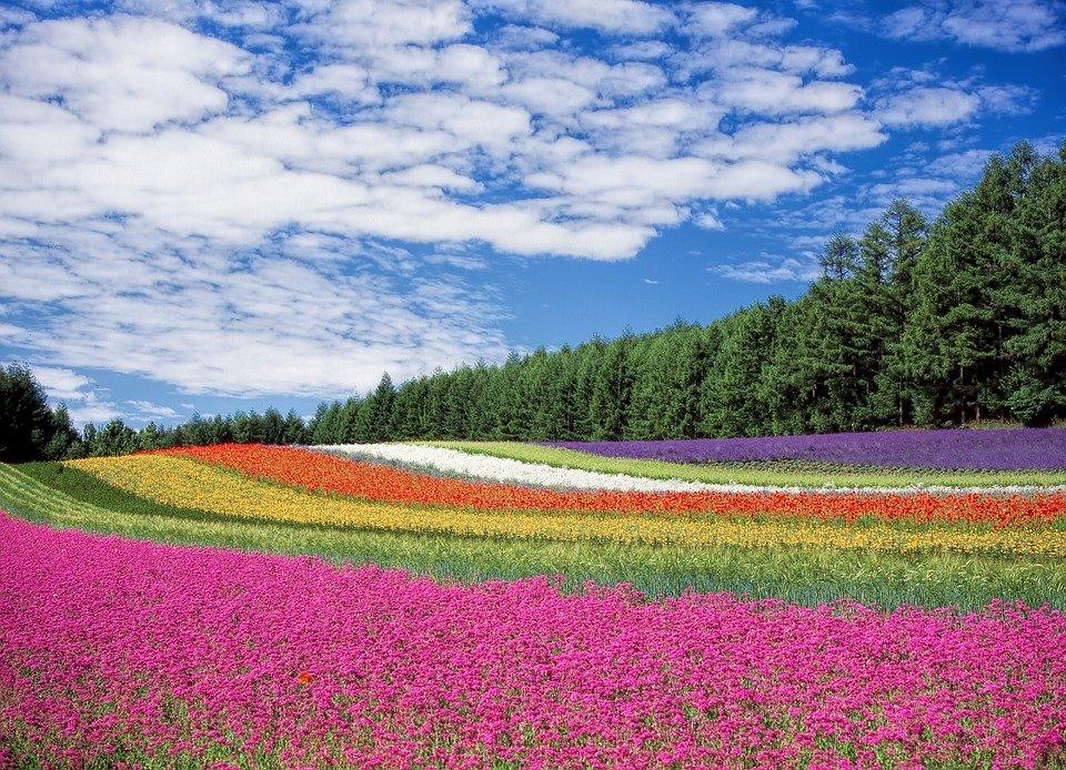 【宇宙メッセージ】美しい地球